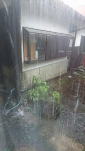梅雨の大雨-1