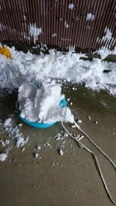 タライで雪運び