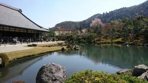 天龍寺-庭園