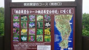 礼文島ハイキングコース