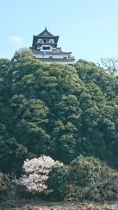 遊覧船から犬山城