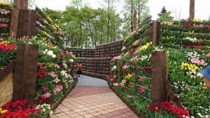 花の大谷-2