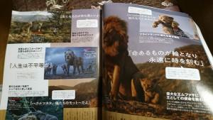 ライオンキング-2