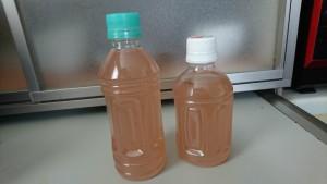 生姜シロップ作り-3
